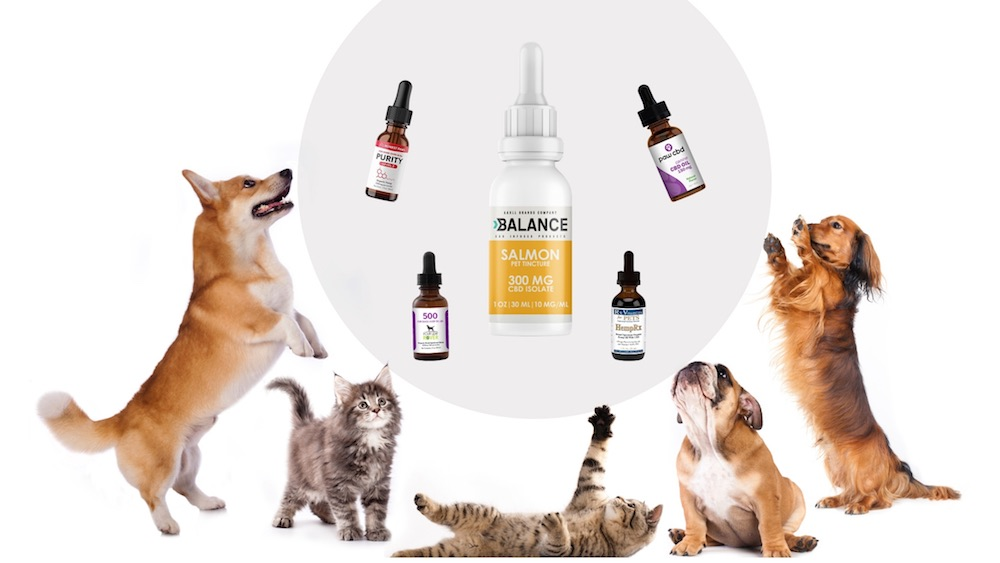spectrum cbd oil for dog