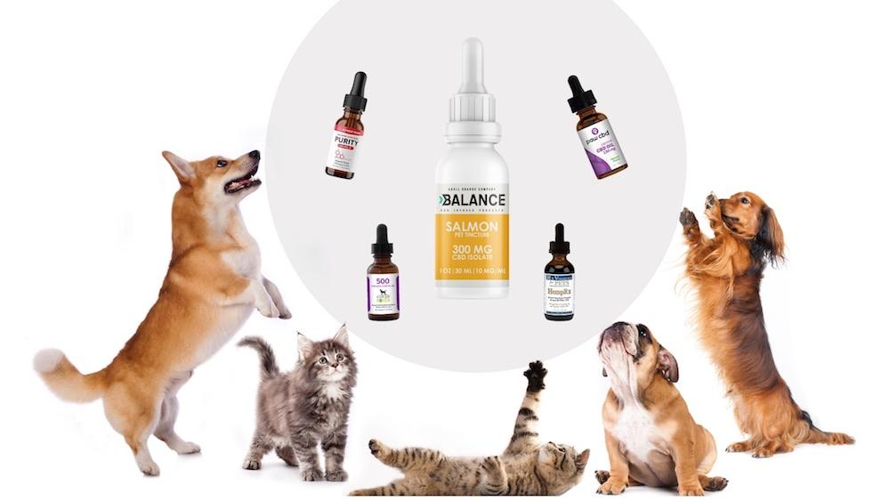 spectrum cbd oil for dog